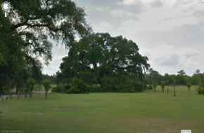 The Hanging Tree Geneva Alabama